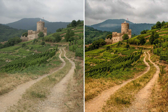 chateaux_vines-before-after